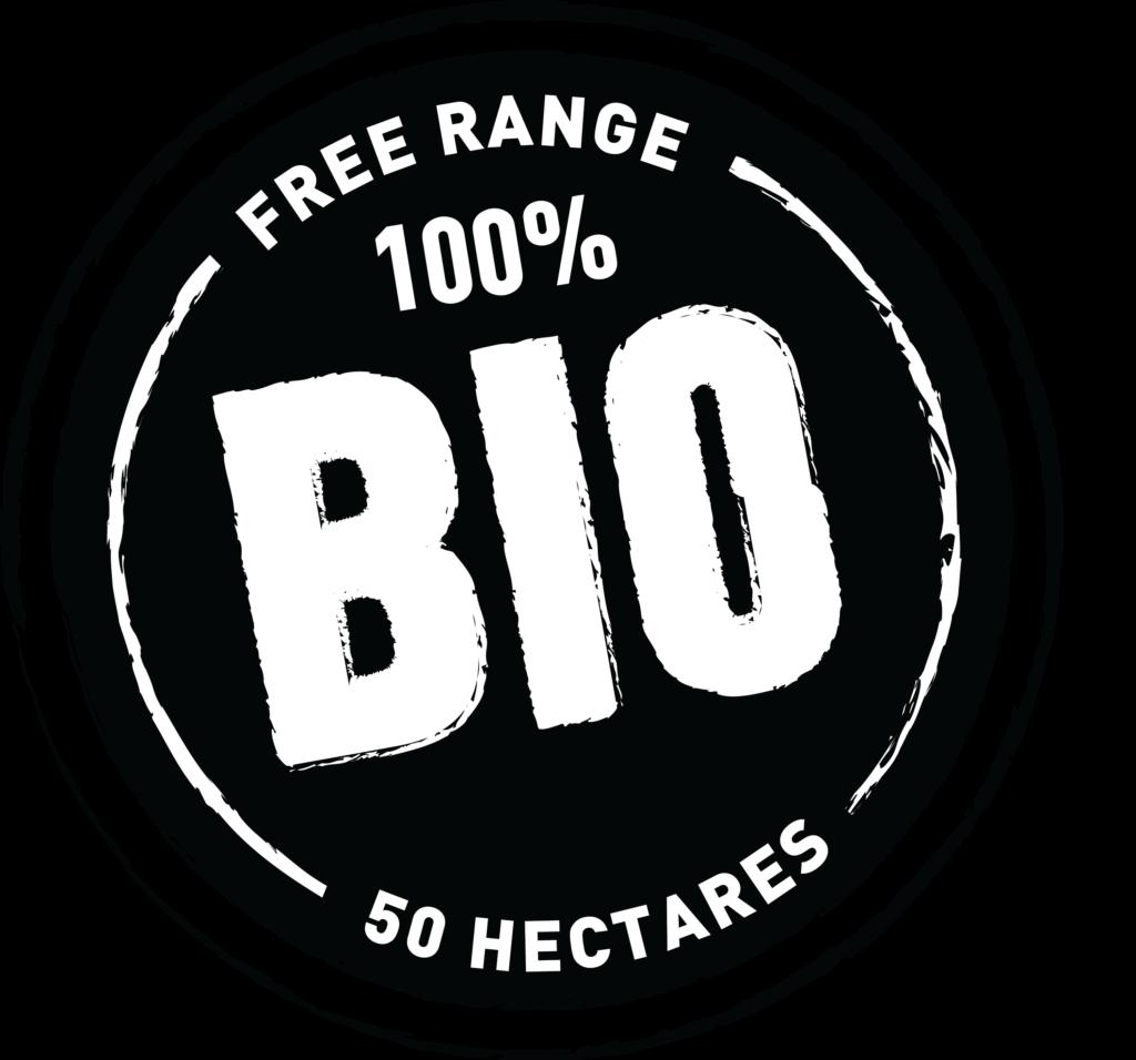 100_BIO_stamp